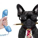 6 conseils pour réussir votre prospection téléphonique