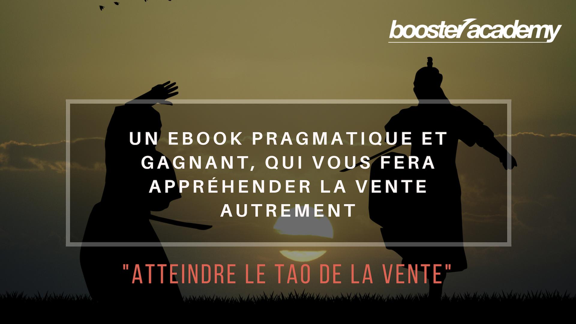 ebook vente conseil