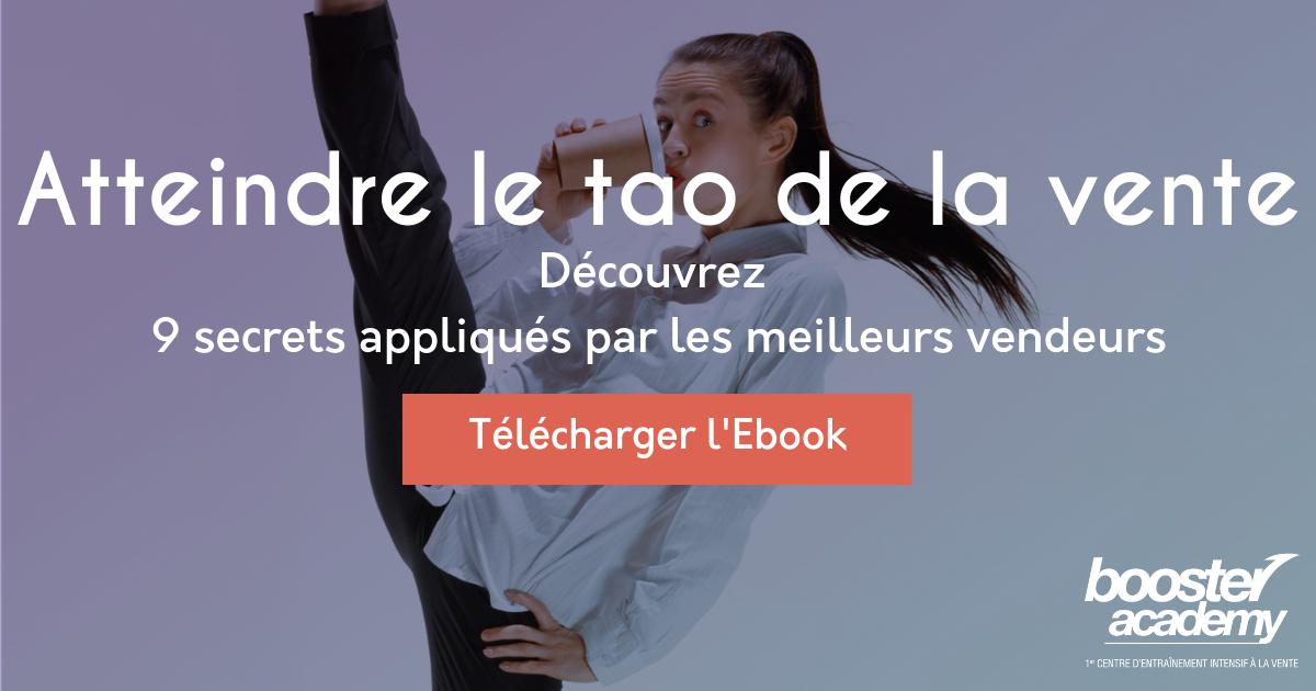 Bannière ebook vente